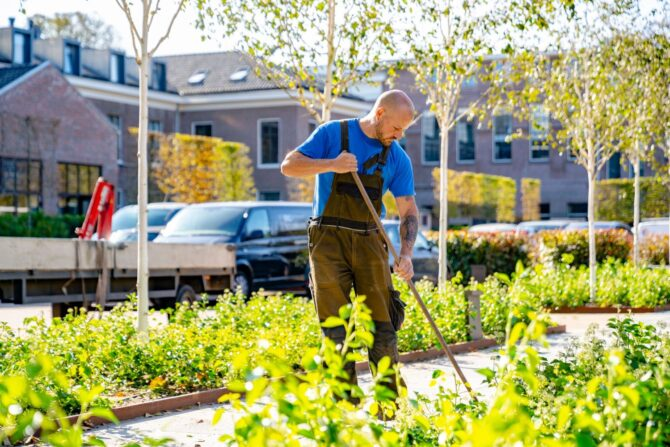 Beheer en groenonderhoud Rijksmonument onderhoud beplanting