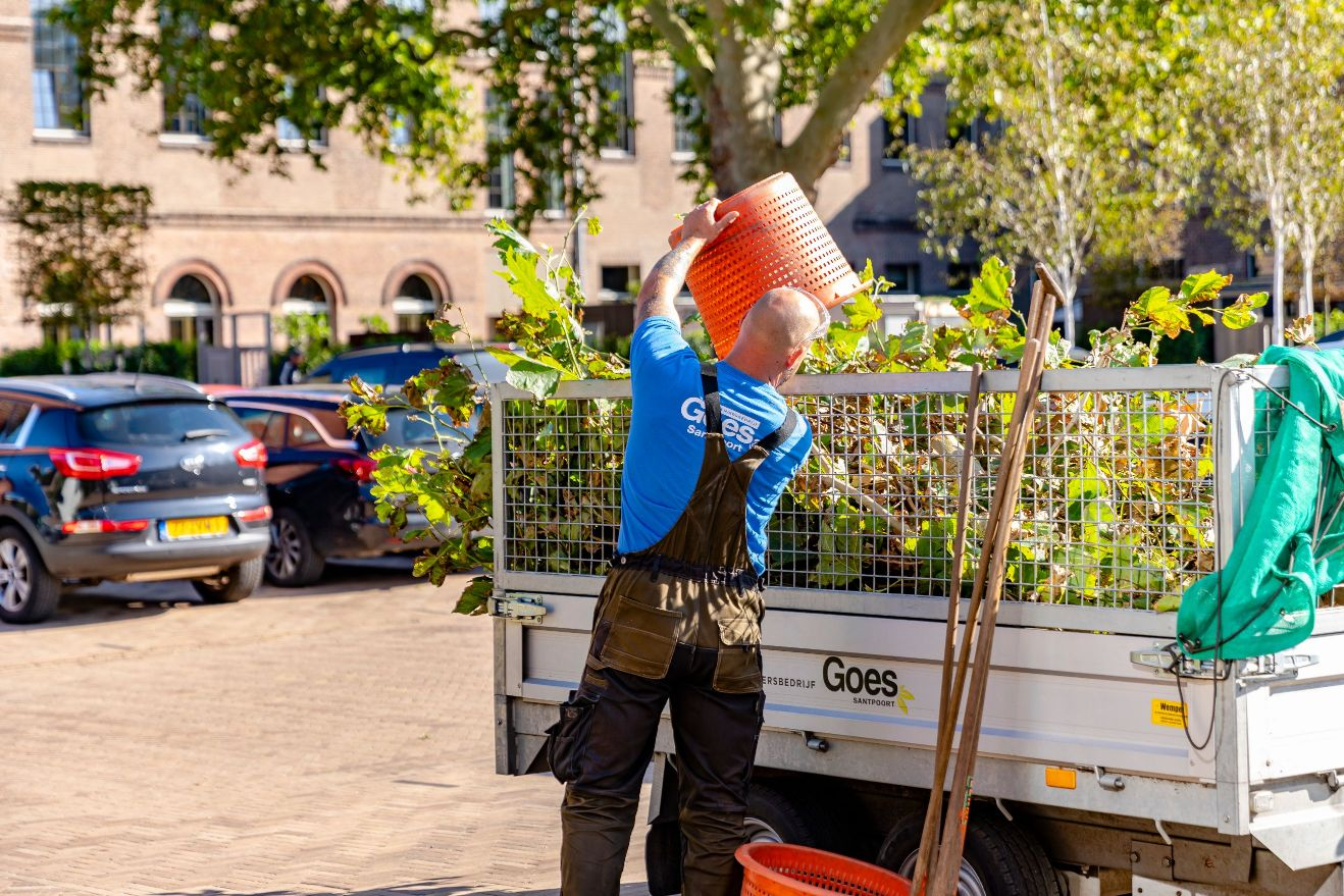 Beheer en groenonderhoud Rijksmonument snoeiwerkzaamheden