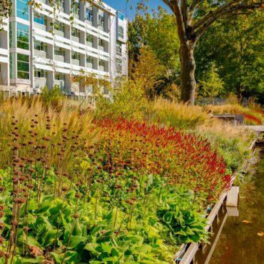 Ontwerp en aanleg park Delft beplanting beplantingsplan