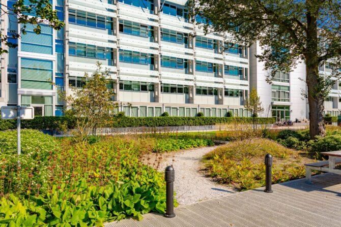 Ontwerp, inrichting en aanleg park Delft